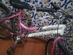 Bicicleta roda 20 foto 1