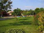 Vende-seTerreno em Soza-Vagos (a 12km de Aveiro) com 950 m2 de área loteada+2337 m2 de cultura (com árvores de carvalhos e de nogueiras). Telf. 969032479 foto 1