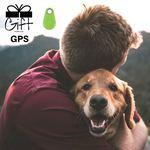 GPS para animais ou objectos pessoais foto 1