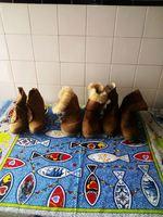 Vendo botas de mulher vários modelos e números 10€ foto 1