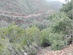 TERRENO COM 2 RUINAS , Para venda , na Amieira ,freguesia de Marmeleite, Monchique . + de 15 hectares de medronheiros , sobreiros , eucaliptos , e mato . 2 roinas legalizadas . Cont 966452992 foto 1