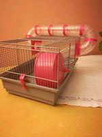 Vendo gaiola de hamster preço negociável. foto 1