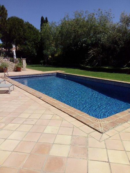 Prestação de serviços jardins e piscinas foto 1