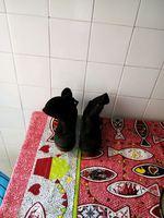 Vendo botas de senhora número 36 foto 1