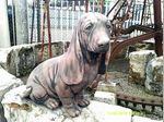 Um cão em cimento foto 1