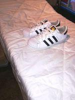 Adidas originais superstar tam. 38 foto 1