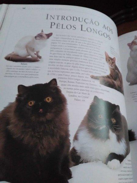 Enciclopédia do Gato foto 1