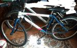 Vendo bicicleta EMT foto 1