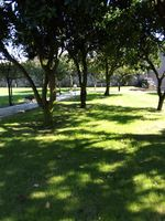 Munutençoes de jardins,limpeza de terrenos. 913853835 foto 1