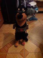 Cão de peluxe foto 1