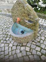 Fonte de água com bomba foto 1