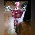 Bicicleta de menina dos 2 aos 7 anos foto 1