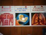 3 livros descobrir o corpo humano foto 1