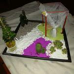 Mini jardins foto 1