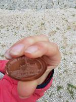 Uma moeda rara por um preço barato foto 1