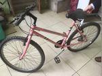 Bicicleta de senhora foto 1