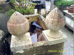 Um par de bolotas em pedra foto 1