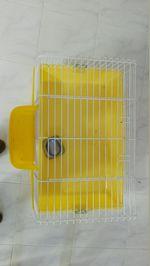 Gaiola amarela foto 1
