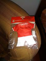 Mini equipamento Benfica. foto 1