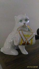 Gato paliteiro - V.A. foto 1