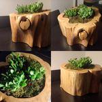 Vaso decorativo artesanal em tronco de cedro