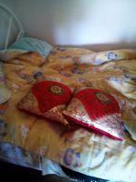 Vendo duas almofadas  lindas foto 1