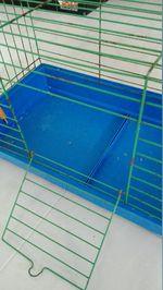 Gaiola azul foto 1
