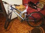 Bicicleta Shimano foto 1