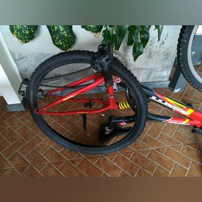 Vendo ou troco bicicleta team foto 2