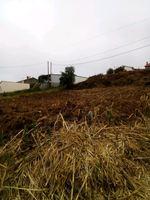 Vendo terreno Para construção de Moradias foto 1